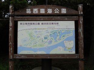 荒川サイクリング7-11-09