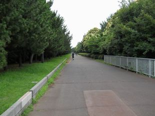 荒川サイクリング7-11-10
