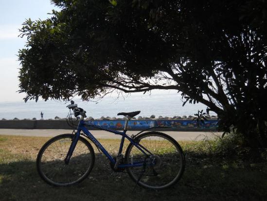 荒川サイクリング07