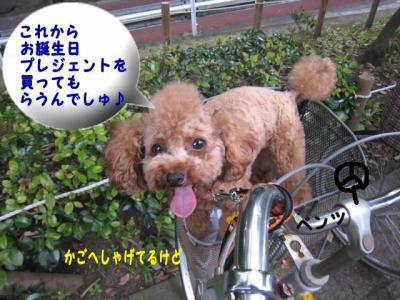 01_20100720095253.jpg