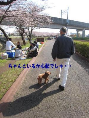 03_20100405003744.jpg