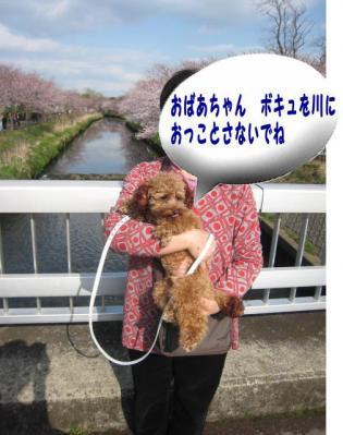 04_20100405003743.jpg