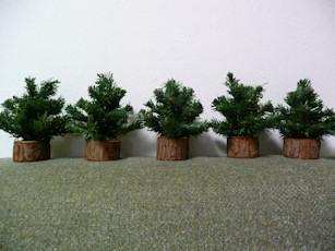 ミニツリー 木