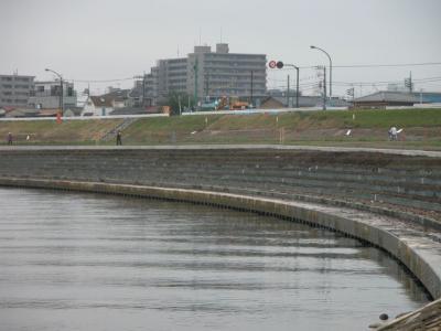 20101120-8