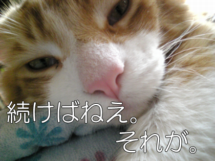 20091019_2.png