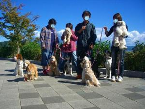 2009-10-11平塚帰り道 066
