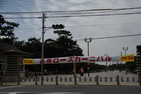 20100509hamadera3.jpg