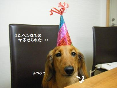 イヌってホント表情に出る正直者だよね。