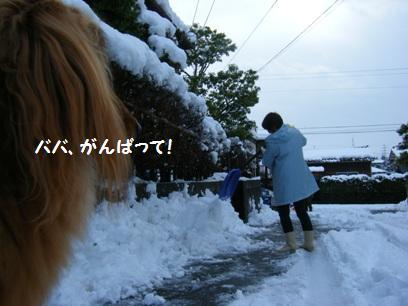 昔は雪だるまとか作ったなぁ。今は寒いし冷たいし作る気ナッシング!!