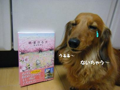 涙もろいのは家族みんなで、最近オトンもテレビ観てよく目をうるませてる(^m^;)