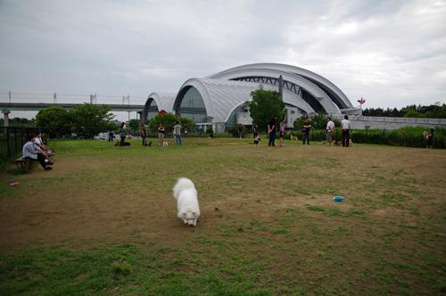 062001.jpg