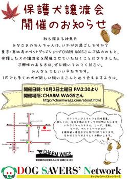 satooya_kokut_fc2i-thumbnail2.jpg