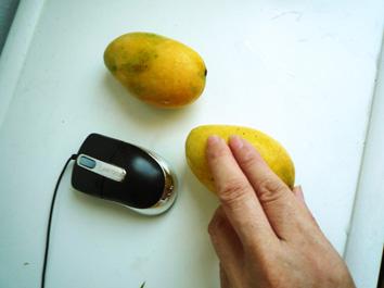 小さなマンゴ