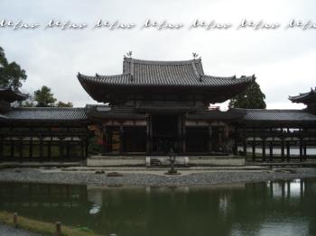 kyoto1115.jpg