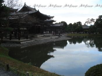 kyoto11152.jpg