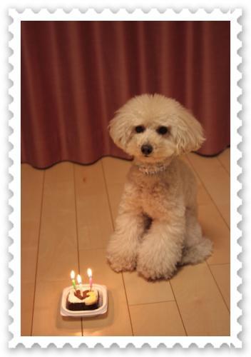 3歳誕生日3