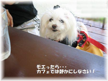21.11.14②