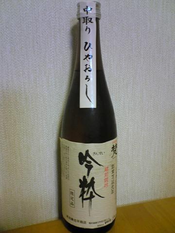 20091106100103