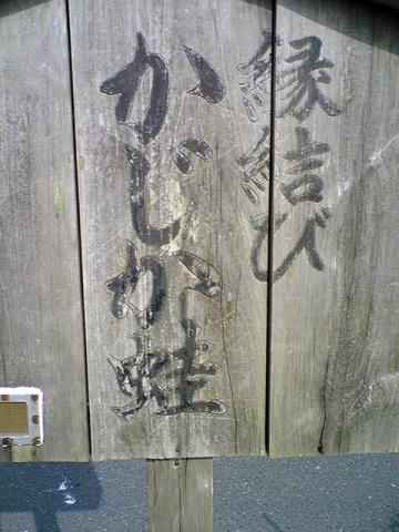 moblog_a951c5fa.jpg