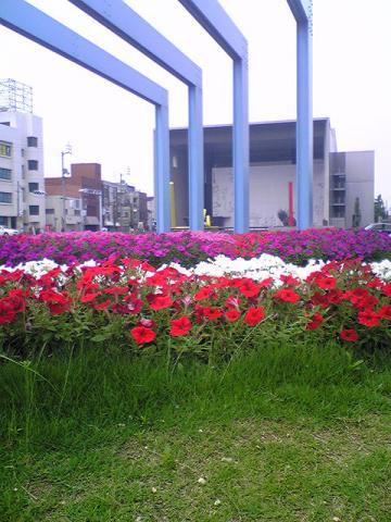 moblog_e8060549.jpg