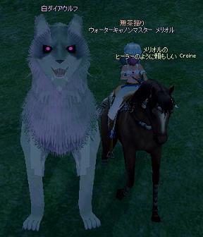 巨大白オオカミはもっと大きいよ!