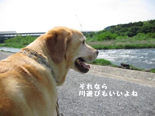 IMG_3362.jpg