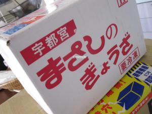 2011gyo2_convert_20110220110958.jpg