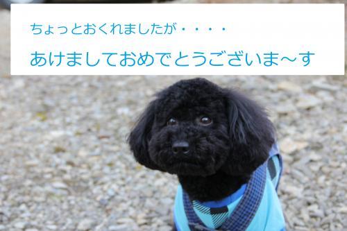 01_convert_20120104205240.jpg