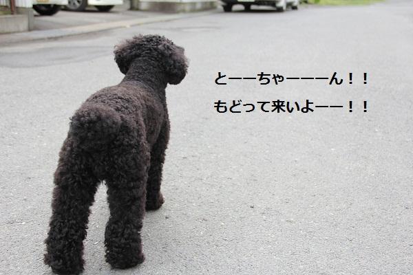 02_20120717003730.jpg
