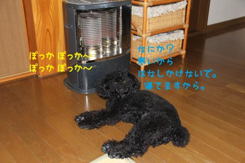 02_convert_20120131232253.jpg