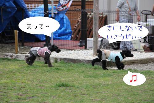 02_convert_20120508234036.jpg