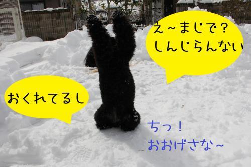03_convert_20120227232317.jpg