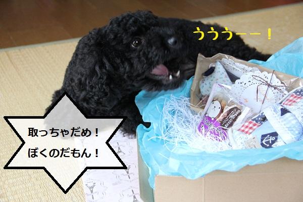 04_20120731203937.jpg