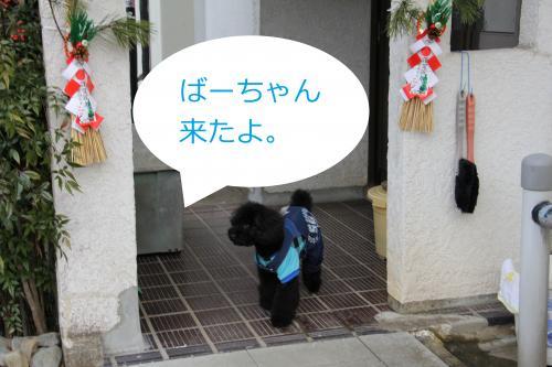 04_convert_20120104210916.jpg