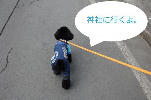07_convert_20120106222015.jpg