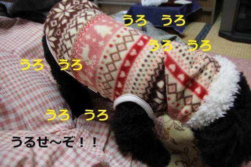 07_convert_20120213221923.jpg