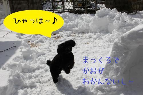 07_convert_20120301003640.jpg