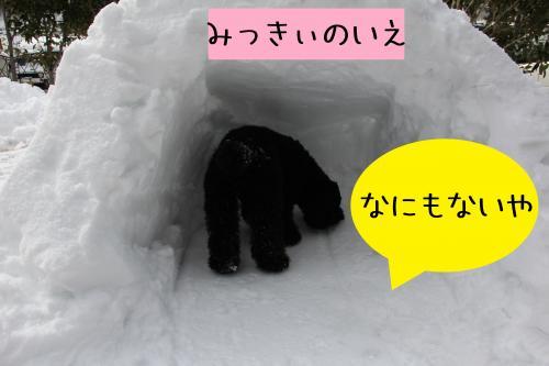 10_convert_20120301004359.jpg
