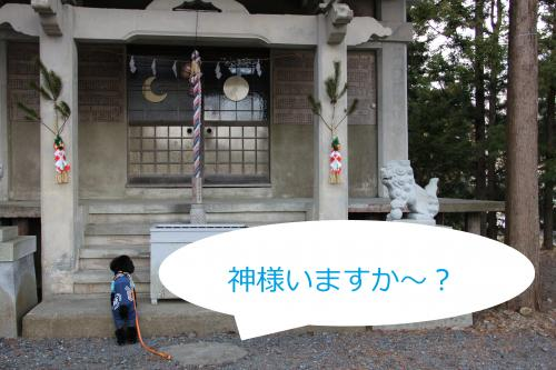 11_convert_20120106224243.jpg
