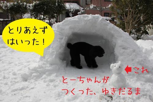 11_convert_20120301004236.jpg