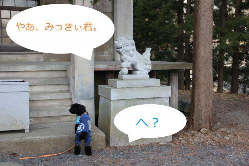 12_convert_20120106224631.jpg