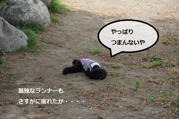 27_20120913230321.jpg