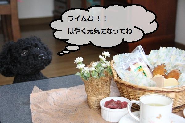 28_20120803004953.jpg