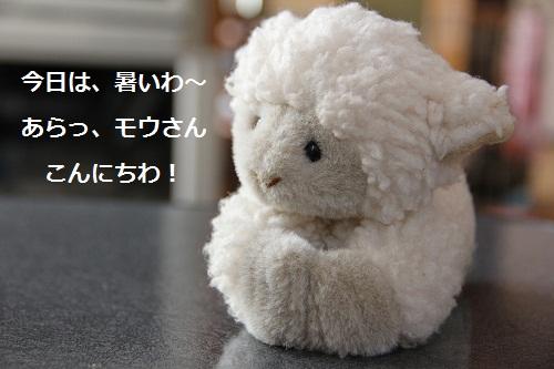 30_20120807225544.jpg