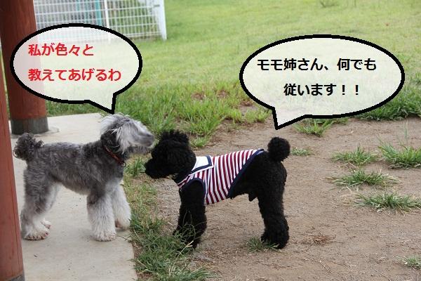 30_20120913230433.jpg
