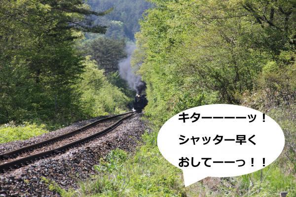 31_convert_20120601002647.jpg