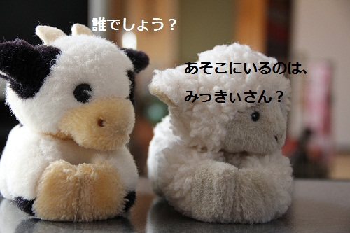 32_20120807225635.jpg