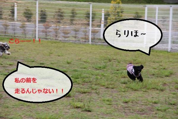 34_20120913230601.jpg