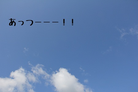 39_20120807225513.jpg