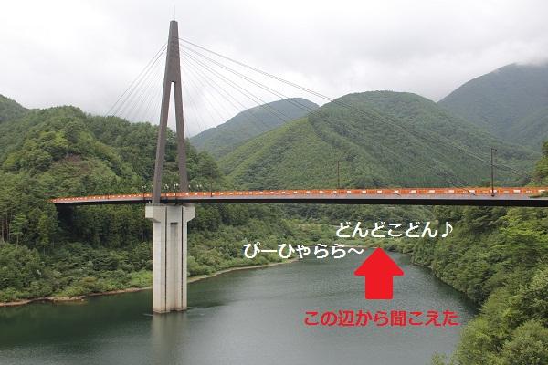41_20120904225526.jpg